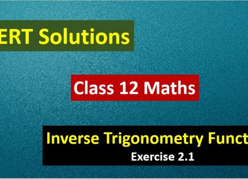 NCERT-Solutions-for-Class-12-Maths-Inverse-Trigonometry-Functions-Exercise-2.1