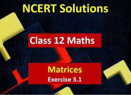 NCERT Solutions for Class 12 Maths