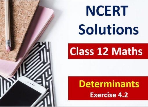 NCERT Solutions for Class 12 Maths Determinants