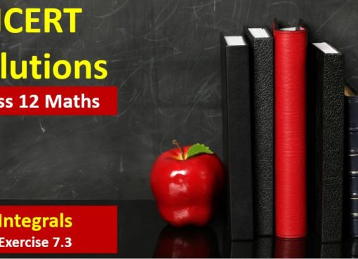 NCERT Solutions for Class 12 Maths Integration