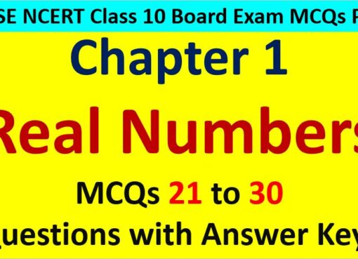 Important MCQ Questions for Class 10 Maths Chapter 1 Real Numbers