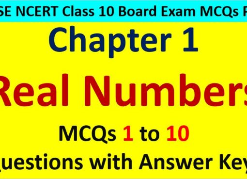 MCQ-Questions-for-Class-10-Maths-Chapter-1-Real-Numbers-1-to-10-with-Answer-Keys-PDF-AMBiPi