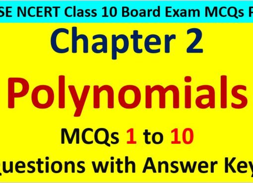 MCQ Questions for Class 10 Maths Chapter 2 Polynomials 1 to 10 with Answer Keys PDF AMBiPi